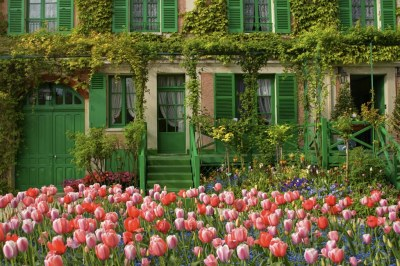 Tulips in front of Monet's Home